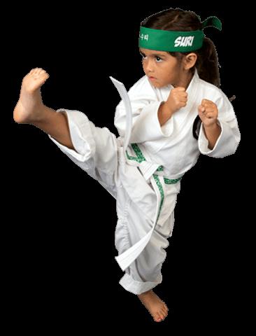 Martial Arts Henderson's Martial Arts - Tigers